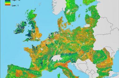 Biodiversidad del suelo en Europa