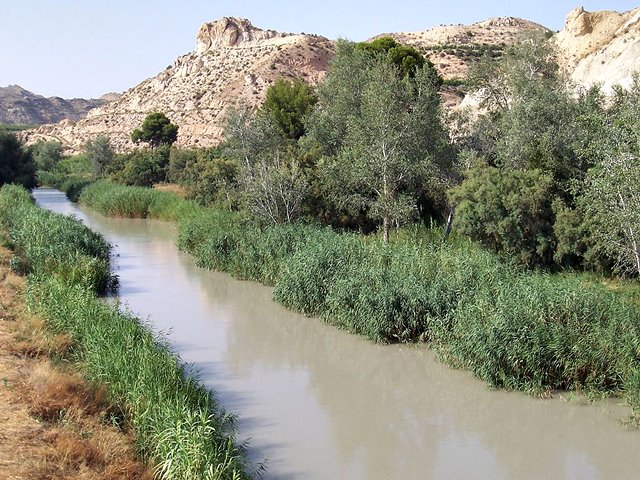 Río Segura a su paso por Archena
