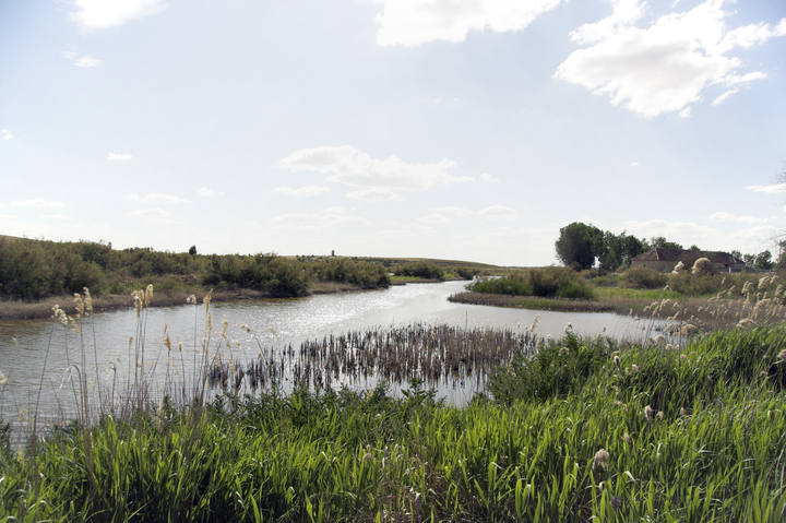 Parque Nacional de las Tablas de Daimiel (España)