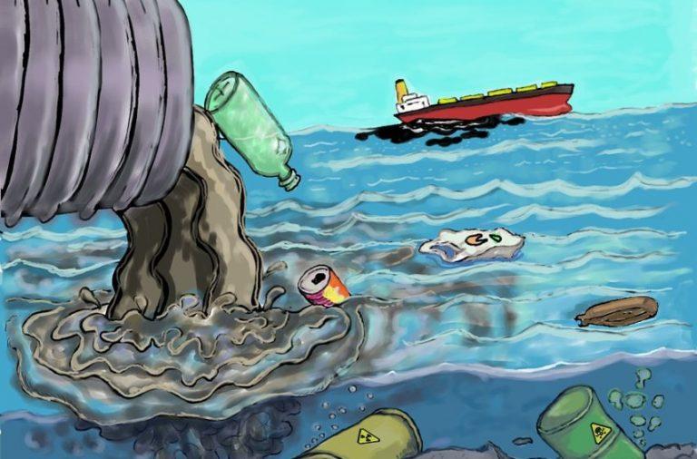 6 maneras de proteger el ecosistema marino con tus acciones ...