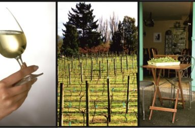 enoturismo vino
