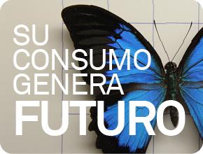 consumo_responsable_triodos