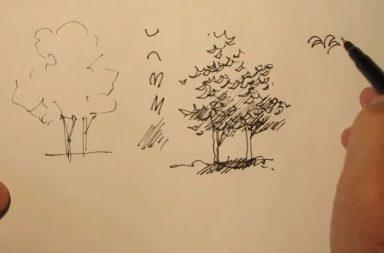 dibujar paisajismo