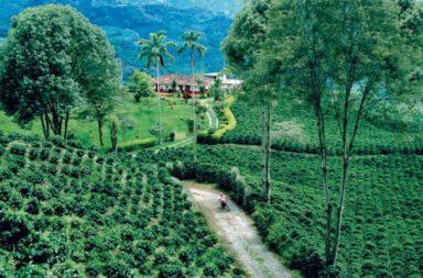 paisaje culturales Colombia Costa Rica