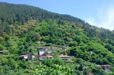 Territorio gallego Ribeira Sacra