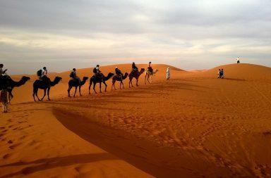 Turista responsable intermundial